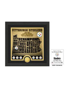 Pittsburgh Steelers Framed 13x13 State Photo Mint w/ Bronze Coin