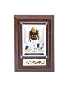 Pittsburgh Steelers #43 Troy Polamalu 4x6 Plaque
