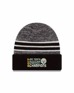 Pittsburgh Steelers 2017 AFC North Champion Knit Cap