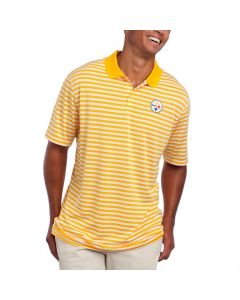 Pittsburgh Steelers Nike Golf Victory Stripe Polo
