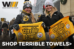 Shop Steelers Terrible Towels